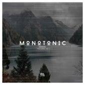 Monotonic Issue 14 de Various Artists