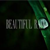 Beautiful Rain by Nature Sounds (1)