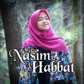Nasim Habbat von ALMA