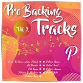 Pro Backing Tracks P, Vol.2 by Pop Music Workshop