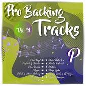 Pro Backing Tracks P, Vol.14 by Pop Music Workshop