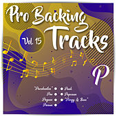 Pro Backing Tracks P, Vol.15 by Pop Music Workshop