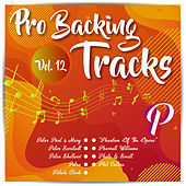 Pro Backing Tracks P, Vol.12 by Various Artists