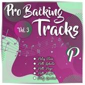 Pro Backing Tracks P Vol.3 by Pop Music Workshop