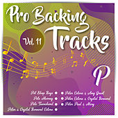 Pro Backing Tracks P, Vol.11 by Pop Music Workshop