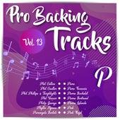 Pro Backing Tracks P, Vol.13 by Pop Music Workshop