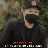 Sin tu amor no valgo nada by Luis Sebastian