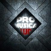 Pro musica de WD
