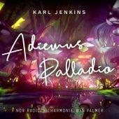 Adiemus - Palladio von NDR Radiophilharmonie