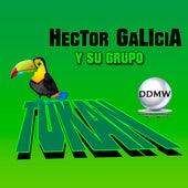 Hector Galicia y Su Grupo Tukan de Hector Galicia Y Su Grupo Tukan