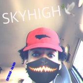 SKY HIGH de M. (Matthieu Chedid)