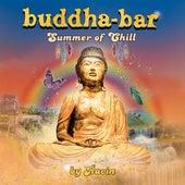 Buddha Bar Summer of Chill (by Ravin) by Buddha-Bar