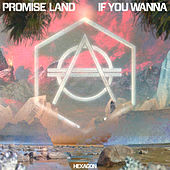 If You Wanna by Promise Land