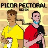 Picor Pectoral (Remix) de Rayben