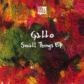 Small Things EP de Gallo