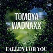 Fallen for You de Tomoya Wadnaxx