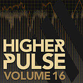 Higher Pulse, Vol. 16 by Various Artists