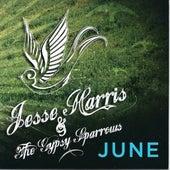 June by Jesse Harris