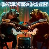 Synergy by Janet Gardner