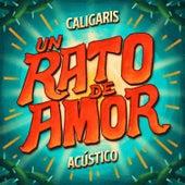 Un Rato de Amor (Acústico) de Los Caligaris