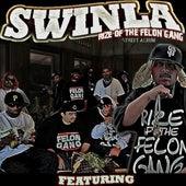 Rize Of The Felon Gang von Swinla