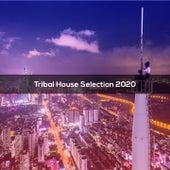 Tribal House Selection 2020 by Bertoni