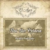 Para Evocar el Ayer / Flor Sin Retoño van Pedro Infante