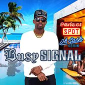 Perfect Spot (Oh Gosh Remix) by Busy Signal