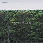 You're Not Alone by Semisonic