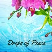 Drops of Peace von Nature Sounds Nature Music (1)