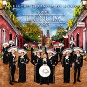 Esencia, Vol. 2 by Mariachi Herencia De Mexico
