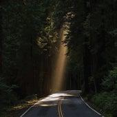 Tunnel Of Love von Odetta