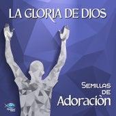 Semillas de Adoración - La Gloria de Dios van German Garcia