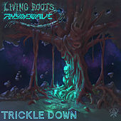 Trickle Down (feat. Rhymewave) de Living Roots