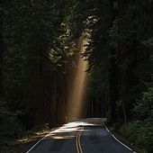 Tunnel Of Love di Stevie Wonder