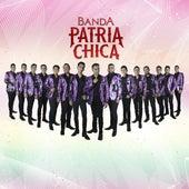 Live 2020 (En Vivo) de Banda Patria Chica