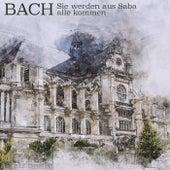 Bach: Sie Werden Aus Saba Alle Kommen de Münchener Bach-Chor