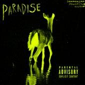 PARADISE by Princess Island