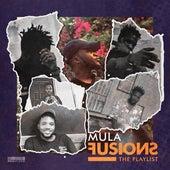 Fusions, The Playlist di Mula
