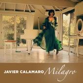 Milagro de Javier Calamaro