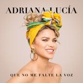 Que No Me Falte La Voz de Adriana Lucía