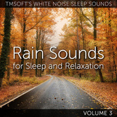 Rain Sounds for Sleep and Relaxation, Vol. 3 de Tmsoft's White Noise Sleep Sounds