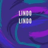Lindo Lindo by Flopi Martínez