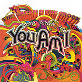The Cream & The Crock... The Best Of You Am I von You Am I