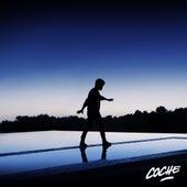 Borrando la Línea del Control (Los Remixes) de Coche