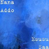 Ensusu Saa by Nana Addo