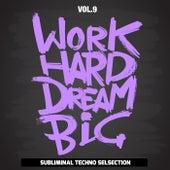 Work Hard Dream Big, Vol. 9 (Subliminal Techno Selection) de Various Artists