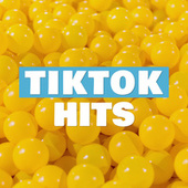 Tik Tock Hits by Various Artists
