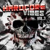 Hardcore Vibes, Vol. 3 de Various Artists