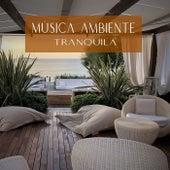 Música Ambiente Tranquila de Meditação e Espiritualidade Musica Academia